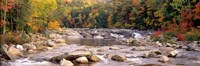 New Hampshire, White Mountains National Forest, River flowing through the wilderness Fine Art Print