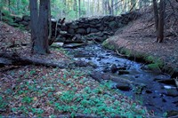 Banks of Lamprey River, National Wild and Scenic River, New Hampshire Fine Art Print