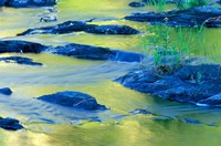 Summer Reflections in the Waters of the Lamprey River, New Hampshire Fine Art Print