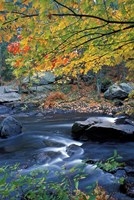 Packers Falls on the Lamprey River, New Hampshire Fine Art Print