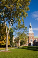 Education, Dartmouth College, New Hampshire Fine Art Print