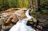 Autumn on Pemigewasset River, Franconia Notch SP, New Hampshire Fine Art Print