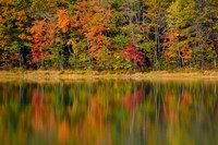 Reflected autumn colors at Echo Lake State Park, New Hampshire Fine Art Print