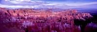 Bryce Canyon, Utah Fine Art Print