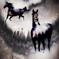 Black Mare - Dream 2 Fine Art Print