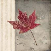 Lodge Leaf 1 Fine Art Print