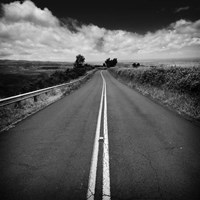 Kauai Road Fine Art Print