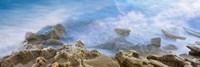 Bird Rock, La Jolla, San Diego, California Fine Art Print