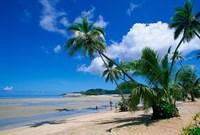 Beach at Musket Cove, Malololailai Island, Fiji Fine Art Print