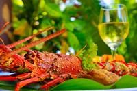 Cuisine, Lobster, Fiji Fine Art Print