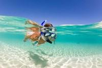 Couple snorkeling, Beqa Island, Fiji Fine Art Print