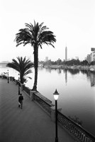 View of the Nile River, Cairo, Egypt Framed Print