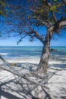 Hammock on the beach of a resort, Nacula Island, Yasawa, Fiji, South Pacific Fine Art Print