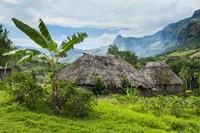 Traditional thatched roofed huts in Navala, Fiji Fine Art Print