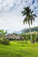 Traditional thatched roofed huts in Navala in the Ba Highlands of Viti Levu, Fiji, South Pacific Fine Art Print