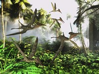 A flock of Pterodactylus reptiles fly over the jungle searching for their next meal Fine Art Print