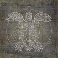 Turtle Geometric Silver Fine Art Print