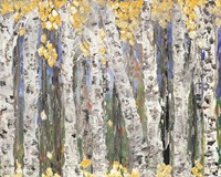 Yellow Leaf Birch Trees Fine Art Print