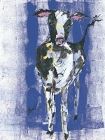 Denim Cow Fine Art Print