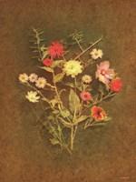 Wild Flowers Fine Art Print