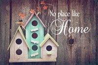 No Place Like Home Bird Houses Fine Art Print