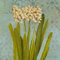 Hyacinth on Teal II Fine Art Print