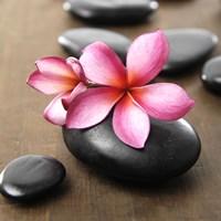 Zen Pebbles 3 Fine Art Print