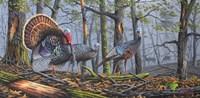 Trophy Strut Fine Art Print