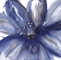 Blue Beauty I Fine Art Print