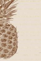 Left Side Pineapple Fine Art Print
