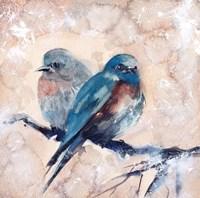Blue Birds Fine Art Print