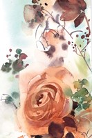 Rosy Rose Fine Art Print