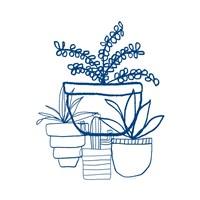 Indigo Succulents Fine Art Print