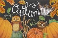 Harvest Owl II Fine Art Print