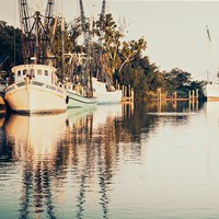 Sepia Shrimp Boats Fine Art Print