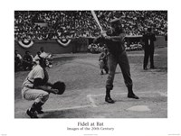Fidel at Bat Fine Art Print