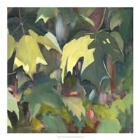 Leaf Array II Fine Art Print