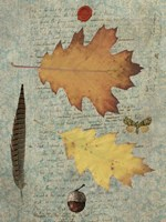 Autumn Leaf III Fine Art Print