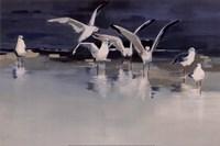 Serenity Fine Art Print