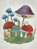 Mushroom Collection II Fine Art Print