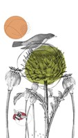 Graphite Tall Thistle And Pods Fine Art Print
