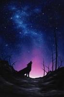 Starry Nights Fine Art Print