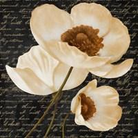 Evening Bloom I Fine Art Print