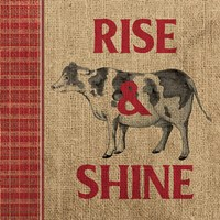 Rise & Shine Farm Fresh II Fine Art Print