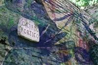 Cripto Fine Art Print