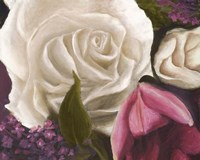 Among the White Roses Fine Art Print