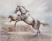 Wild Horses II Fine Art Print
