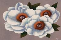 Three White Flowers Fine Art Print