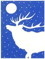White Elk Fine Art Print