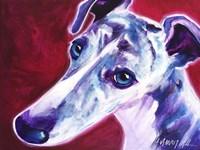 Greyhound - Myrtle Fine Art Print